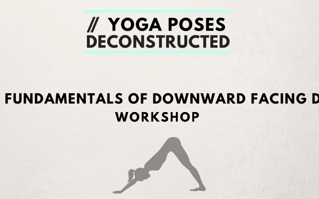 Yoga Poses Deconstructed Workshops