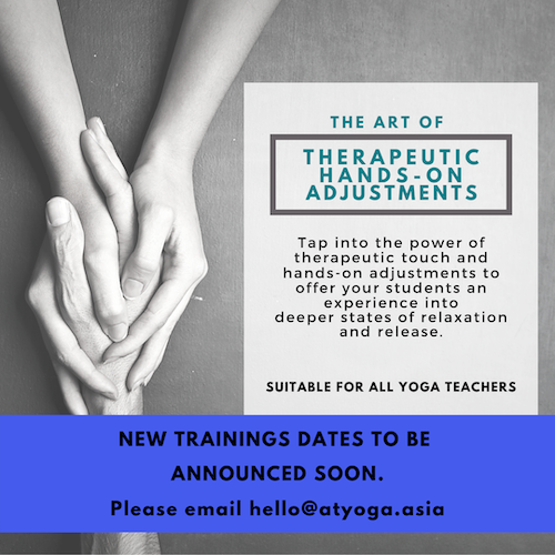 The Art of Therapeutic Hands-On Adjustments – Next Training Date TBA